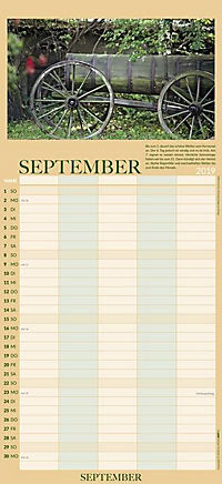 100jähriger Kalender Familienplaner 2019 - Produktdetailbild 9