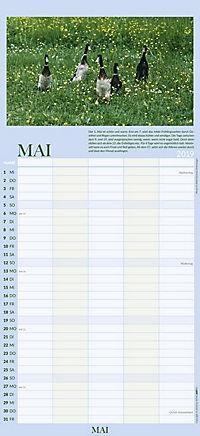 100jähriger Kalender Familienplaner 2019 - Produktdetailbild 5