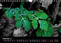 2019 Colour and Light (Wall Calendar 2019 DIN A4 Landscape) - Produktdetailbild 12