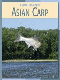 21st Century Skills Library: Animal Invaders: Asian Carp, Barbara A. Somervill