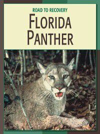 21st Century Skills Library: Road to Recovery: Florida Panther, Barbara A. Somervill