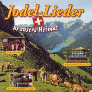 40 Jodel-Lieder Us Eusere Heimat, Diverse Interpreten