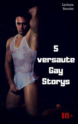 5 versaute Gay Storys, Lariana Bouche