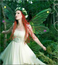 99CENT EBOOK&quote;Amazing Grimm's Fairy Tales&quote;, Brothers Grimm