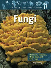 A Class of Their Own: Fungi, Judy Wearing