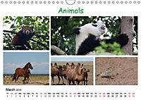 A colourful journey to Asia (Wall Calendar 2019 DIN A4 Landscape) - Produktdetailbild 3