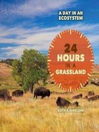 A Day in an Ecosystem: 24 Hours in a Grassland, Ruth Bjorklund