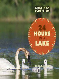 A Day in an Ecosystem: 24 Hours in a Lake, Alicia Z. Klepeis