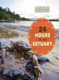 A Day in an Ecosystem: 24 Hours in an Estuary, Laura Sullivan