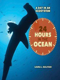 A Day in an Ecosystem: 24 Hours in the Ocean, Laura Sullivan