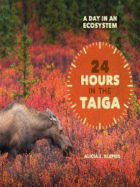 A Day in an Ecosystem: 24 Hours in the Taiga, Alicia Z. Klepeis