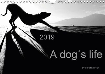 A dog s life / UK Version (Wall Calendar 2019 DIN A4 Landscape), Christine Frick