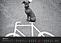 A dog's life / UK Version (Wall Calendar 2019 DIN A4 Landscape) - Produktdetailbild 4