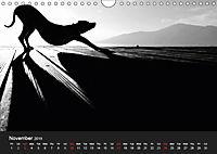 A dog's life / UK Version (Wall Calendar 2019 DIN A4 Landscape) - Produktdetailbild 11