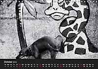 A dog's life / UK Version (Wall Calendar 2019 DIN A4 Landscape) - Produktdetailbild 10