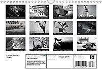 A dog's life / UK Version (Wall Calendar 2019 DIN A4 Landscape) - Produktdetailbild 13