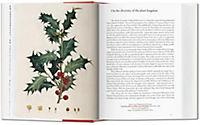 A Garden Eden. Masterpieces of Botanical Illustration - Produktdetailbild 2