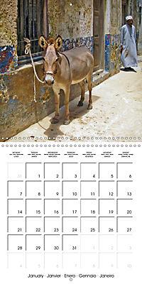 A glimpse of Zanzibar (Wall Calendar 2019 300 × 300 mm Square) - Produktdetailbild 1