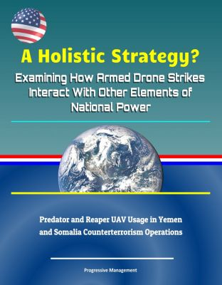 A Holistic Strategy? Examining How Armed Drone Strikes Interact With Other Elements of National Power: Predator and Reaper UAV Usage in Yemen and Somalia Counterterrorism Operations