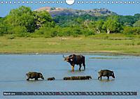 A journey through Sri Lanka (Wall Calendar 2019 DIN A4 Landscape) - Produktdetailbild 3