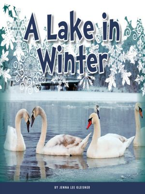 A Lake in Winter, Jenna Lee Gleisner