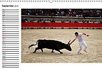 A Look at the Provence (Wall Calendar 2019 DIN A3 Landscape) - Produktdetailbild 9