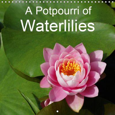 A Potpourri of Waterlilies (Wall Calendar 2019 300 × 300 mm Square), Gisela Kruse