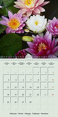 A Potpourri of Waterlilies (Wall Calendar 2019 300 × 300 mm Square) - Produktdetailbild 2