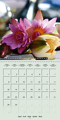 A Potpourri of Waterlilies (Wall Calendar 2019 300 × 300 mm Square) - Produktdetailbild 4