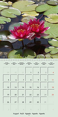 A Potpourri of Waterlilies (Wall Calendar 2019 300 × 300 mm Square) - Produktdetailbild 8