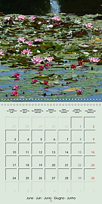A Potpourri of Waterlilies (Wall Calendar 2019 300 × 300 mm Square) - Produktdetailbild 6