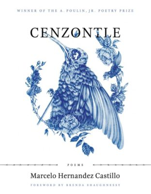 A. Poulin, Jr. New Poets of America: Cenzontle, Marcelo Hernandez Castillo