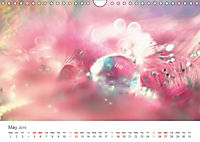 A Smaller World (Wall Calendar 2019 DIN A4 Landscape) - Produktdetailbild 5