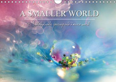 A Smaller World (Wall Calendar 2019 DIN A4 Landscape), Samantha Fortenberry