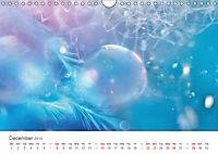 A Smaller World (Wall Calendar 2019 DIN A4 Landscape) - Produktdetailbild 12