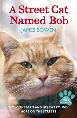 A Street Cat Named Bob, James Bowen