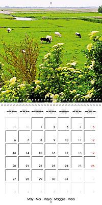A visit to Belgium (Wall Calendar 2019 300 × 300 mm Square) - Produktdetailbild 5