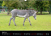 A Visit to the Zoo (Wall Calendar 2019 DIN A3 Landscape) - Produktdetailbild 4