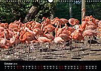 A Visit to the Zoo (Wall Calendar 2019 DIN A3 Landscape) - Produktdetailbild 10