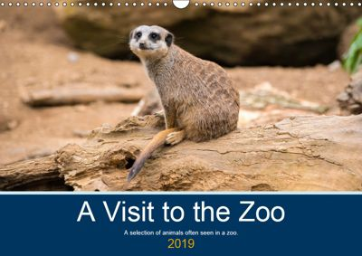 A Visit to the Zoo (Wall Calendar 2019 DIN A3 Landscape), Craig Russell