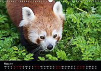 A Visit to the Zoo (Wall Calendar 2019 DIN A3 Landscape) - Produktdetailbild 5