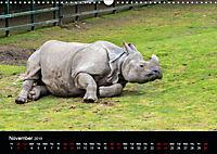 A Visit to the Zoo (Wall Calendar 2019 DIN A3 Landscape) - Produktdetailbild 11