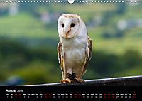 A Visit to the Zoo (Wall Calendar 2019 DIN A3 Landscape) - Produktdetailbild 8