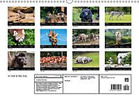 A Visit to the Zoo (Wall Calendar 2019 DIN A3 Landscape) - Produktdetailbild 13