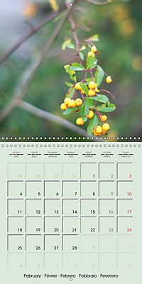 A WALK (Wall Calendar 2019 300 × 300 mm Square) - Produktdetailbild 2