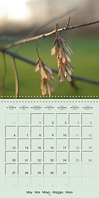 A WALK (Wall Calendar 2019 300 × 300 mm Square) - Produktdetailbild 5