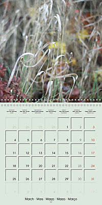 A WALK (Wall Calendar 2019 300 × 300 mm Square) - Produktdetailbild 3