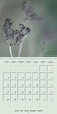 A WALK (Wall Calendar 2019 300 × 300 mm Square) - Produktdetailbild 6