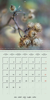 A WALK (Wall Calendar 2019 300 × 300 mm Square) - Produktdetailbild 7