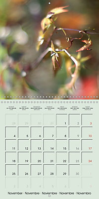 A WALK (Wall Calendar 2019 300 × 300 mm Square) - Produktdetailbild 11